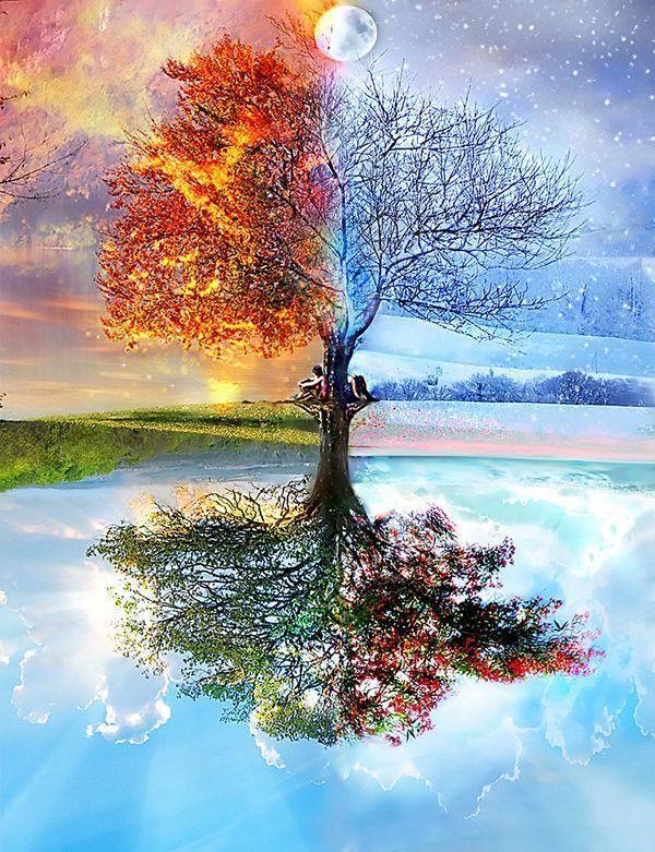 Les quatres saisons - Dessin 4 saisons ...